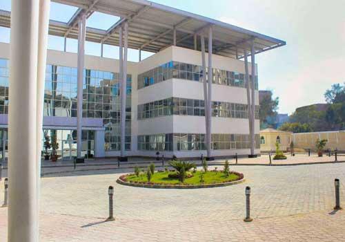 الجامعة المصرية الصينية