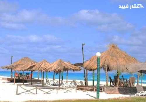 قرية عايدة الساحل الشمالى